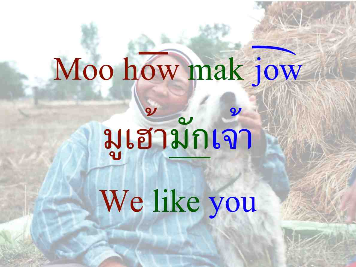 Isaan Thai Lady with Dog Says We Like You