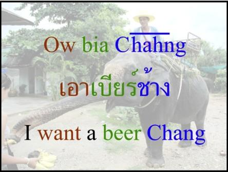 Thai Elephant Says I Want a Beer Chang