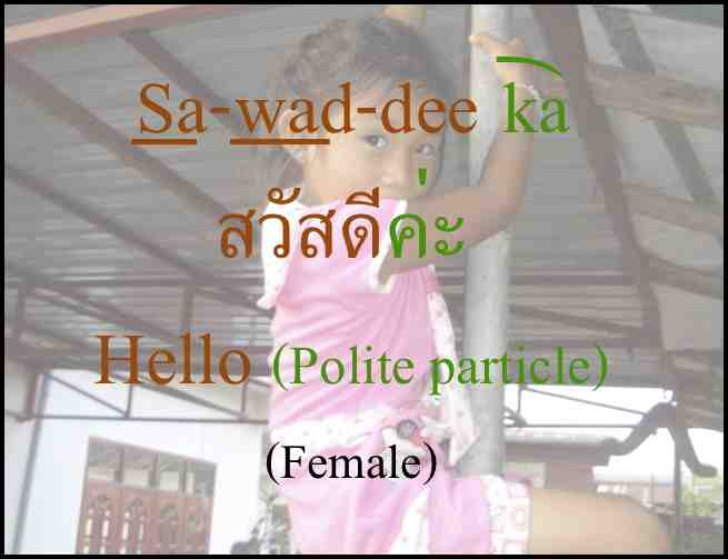 Cute Girl Says Hello in Thai Language